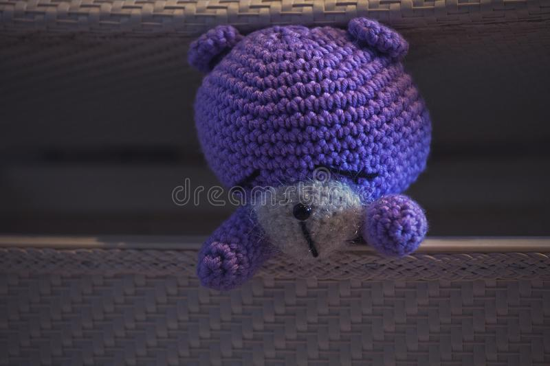 Wool Toy Home interior day light royalty free stock images