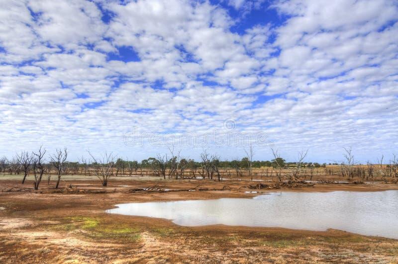 Woolabra,昆士兰,澳大利亚 库存照片