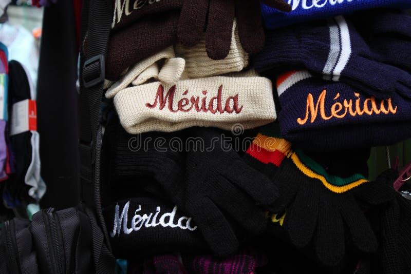 Woolen Hüte u. Handschuhe lizenzfreie stockbilder