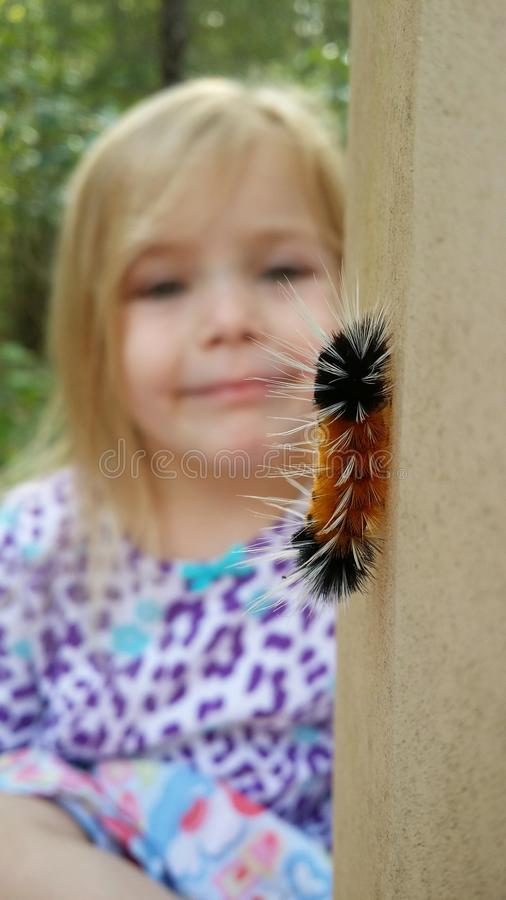 Wooley catapiller watching stock images