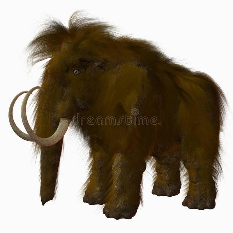 Woolly Mammoth royalty free illustration