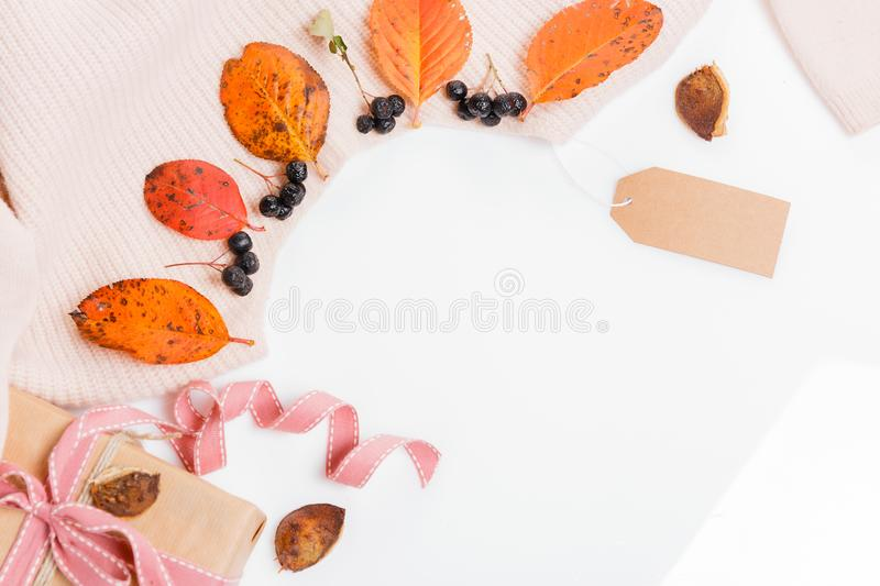 Woomen gentle beige pink sweater, dry autumn leaves and aronia berries on a white background. Flat lay, top view. Autumn composition. Woomen gentle beige pink stock images