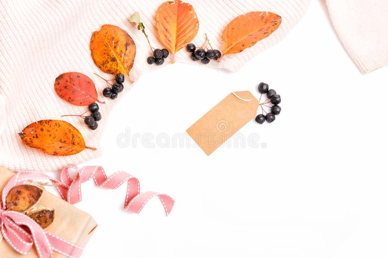 Woomen gentle beige pink sweater, dry autumn leaves and aronia berries on a white background, Autumn, fall concept. Woomen gentle beige pink sweater, label, gift stock photo