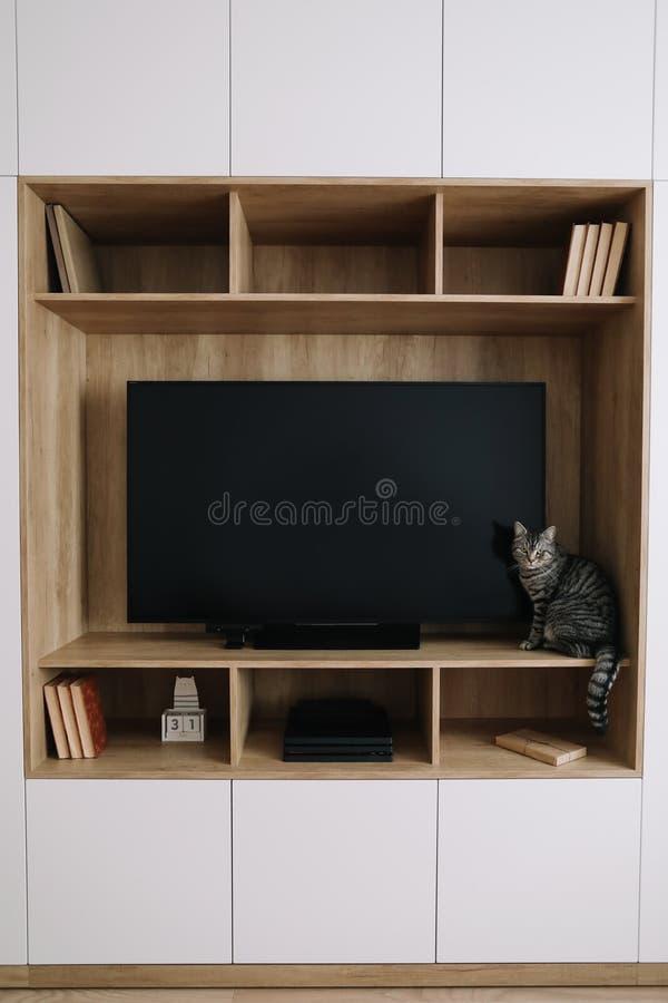 Woonkamerbinnenland met TV en een garderobe Het leuke kat binnen schieten Huis binnenlands ontwerp, Skandinavische stijl stock afbeeldingen