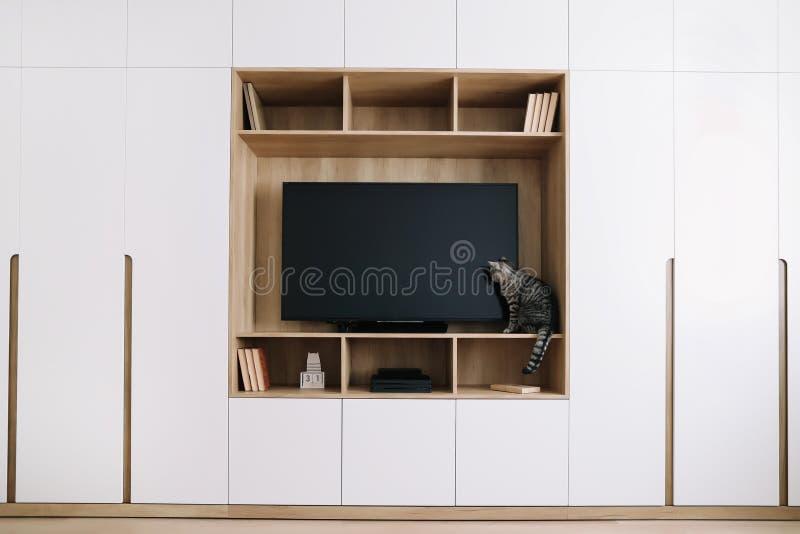 Woonkamerbinnenland met TV op een muur en een witte garderobe Het leuke kat binnen schieten Huis binnenlands ontwerp, Skandinavis stock fotografie