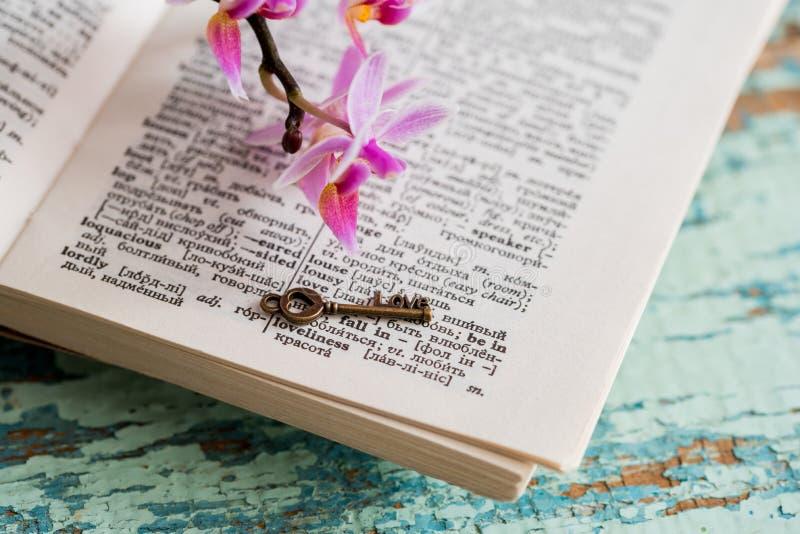 Woordenboekpagina met woord royalty-vrije stock afbeelding