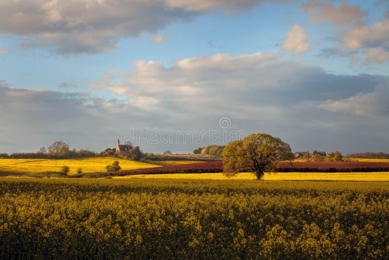 Worcestershire-Ackerland, England stockfotos