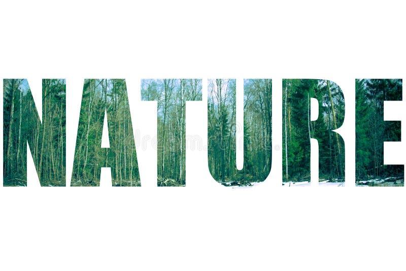Word AARD over sneeuwlandschap in het Gestemde de lentebos stock afbeelding