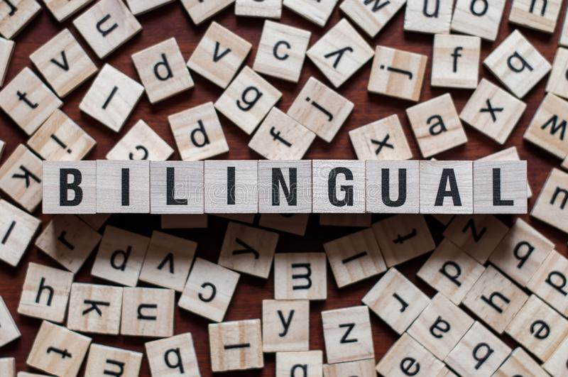 The word of Bilingual on building blocks concept royalty free stock image