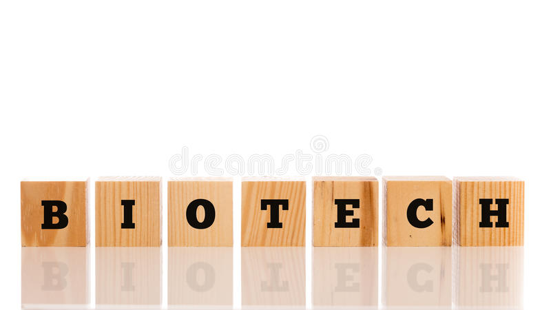 The word - Biotech - in alphabet letters on a row of wooden bloc. Ks in a conceptual image, on white with copyspace above and reflection below royalty free stock image
