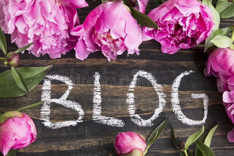 Word Blog with Pink Peonies. On Rustic Wooden Background stock photos