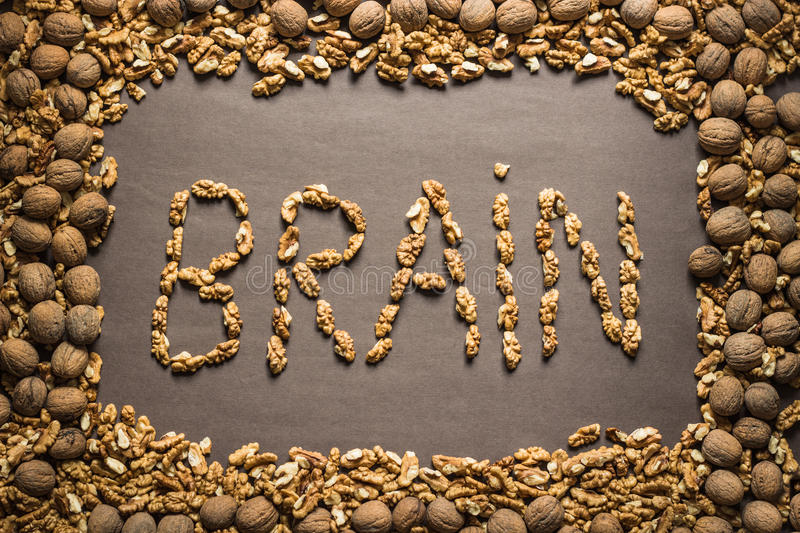 The word brain is written from the walnuts stock photo