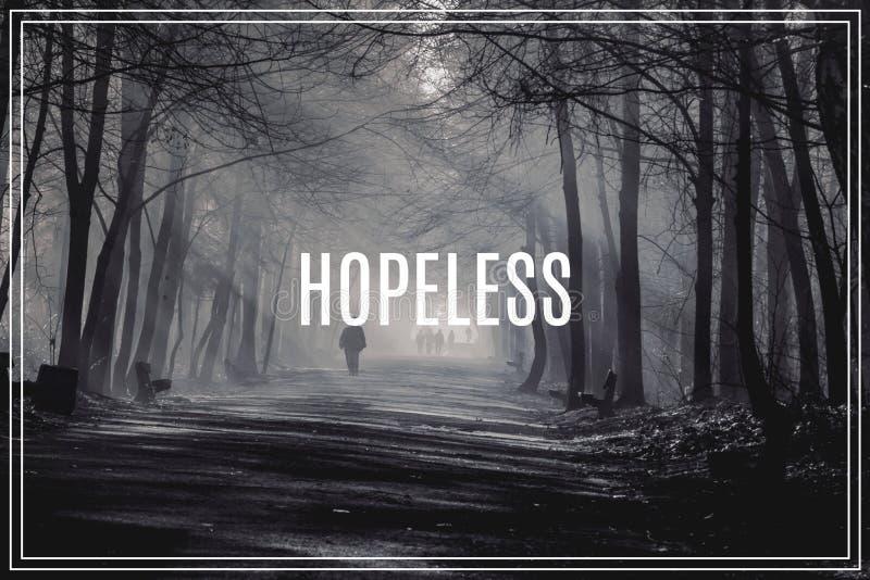 Word désespéré Route et rayons de soleil en brouillard fort dans la forêt illustration libre de droits