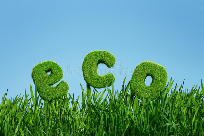 Word d'eco sur l'herbe photo stock