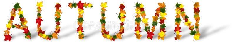 Word de Herfst van gekleurd divers wordt gecreeerd die doorbladert vector illustratie