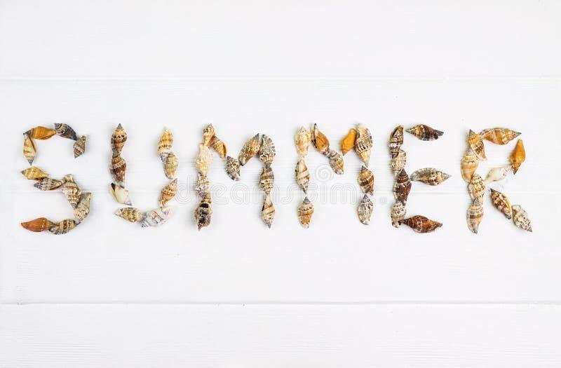 Word de ZOMER met shells op houten wordt geschreven die stock fotografie