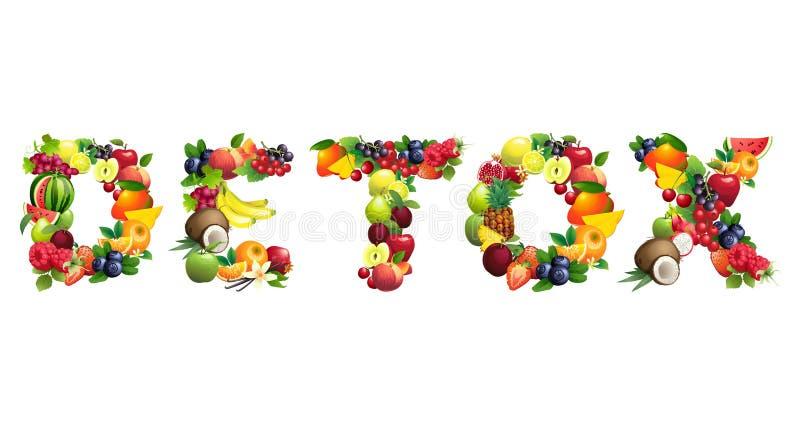 Word DETOX uit verschillende vruchten met bladeren wordt samengesteld dat vector illustratie