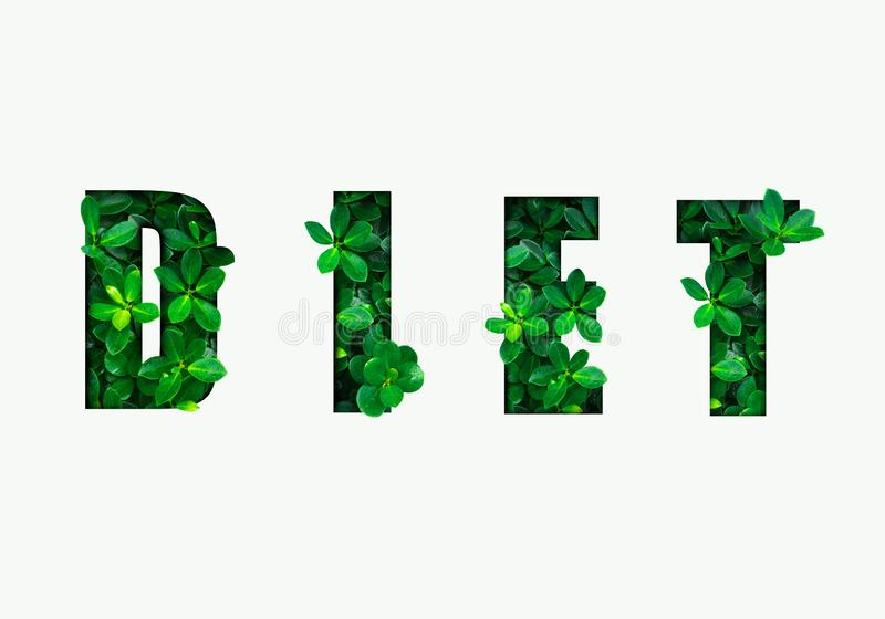 Word DIET is made from green leaves. Concept of diet, cleansing the body, healthy eating, ditital detox. / royalty free illustration