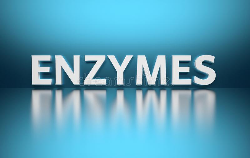 Word Enzymes. Written in large bold white letters and placed on blue background over reflective surface. 3d illustration royalty free illustration