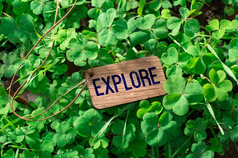 The word explore wooden tag. On Clover royalty free stock photo