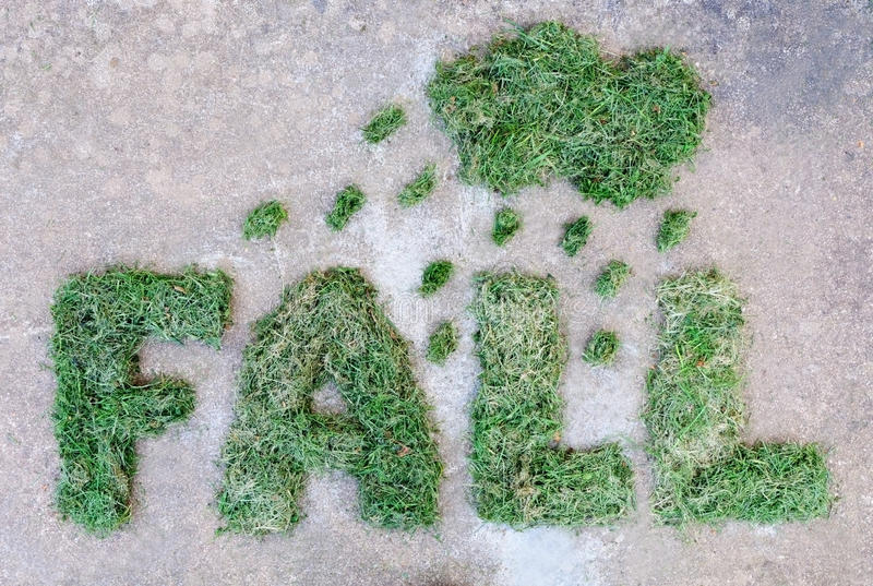 Word FALL made of dried green grass with cloud and raindrops on grey stone background. Rainy weather at autumn stock photo