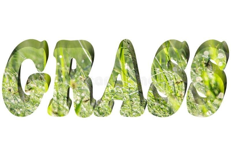 Word GRAS in 3d royalty-vrije illustratie