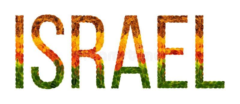 Word het land van Israël wordt geschreven met bladeren op een witte geïsoleerde achtergrond, een banner voor druk, het creatieve  stock illustratie