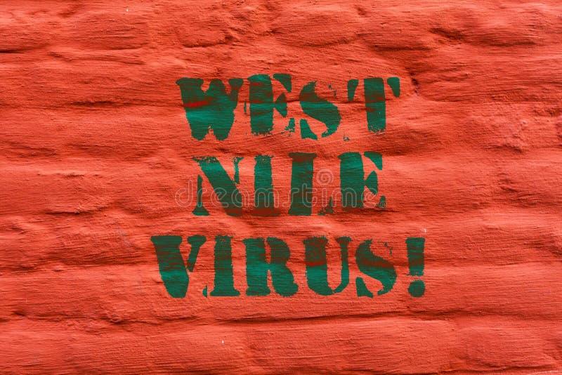Word het schrijven het tekstwesten Nile Virus Bedrijfsconcept voor Virale die besmettingsoorzaak typisch door muggenBakstenen muu royalty-vrije stock fotografie