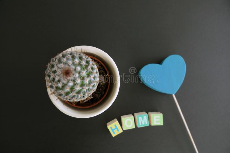 The word Home in Wooden Letter Blocks, Blue Heart and a Cactus in a Flower Pot isolated on a simple Black Background royalty free stock images