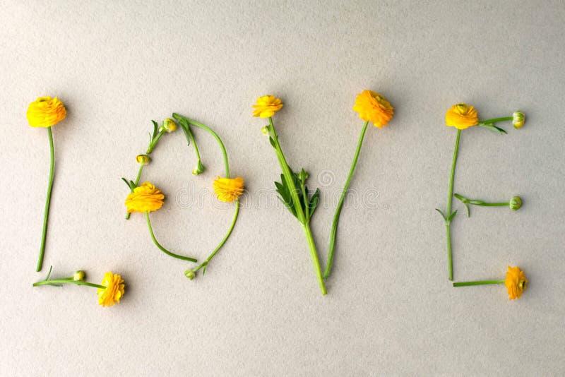 Word LIEFDE van gele bloemen op groene pastelkleurachtergrond die wordt gemaakt Minimaal Liefdeconcept Moedersdag en de Dag de Vl stock afbeelding