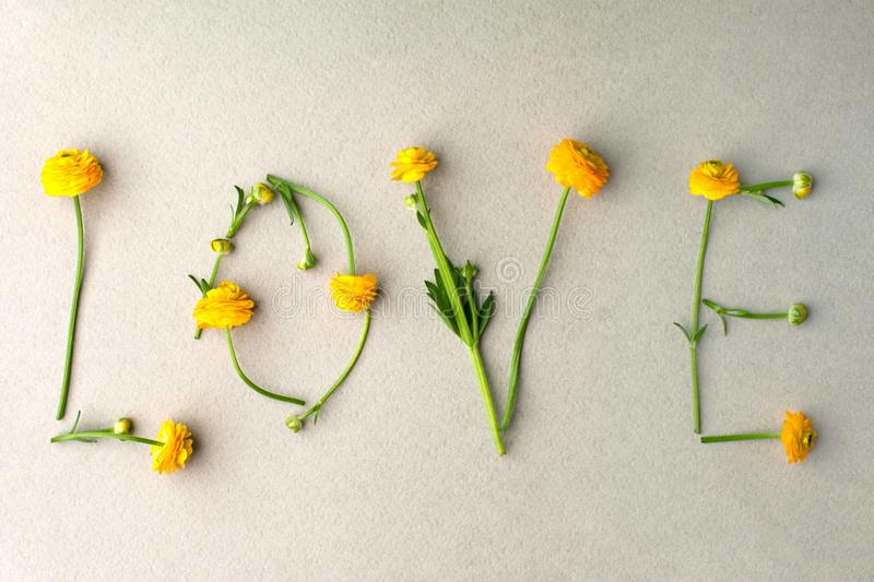 Word LOVE made of yellow flowers on green pastel background. Minimal love concept. Mothers day and Valentine`s Day Flat lay stock image