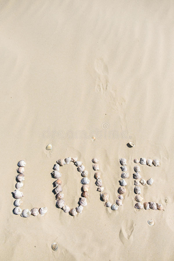 Word love written on the sand with sea shells at sunset on the beach.  stock images