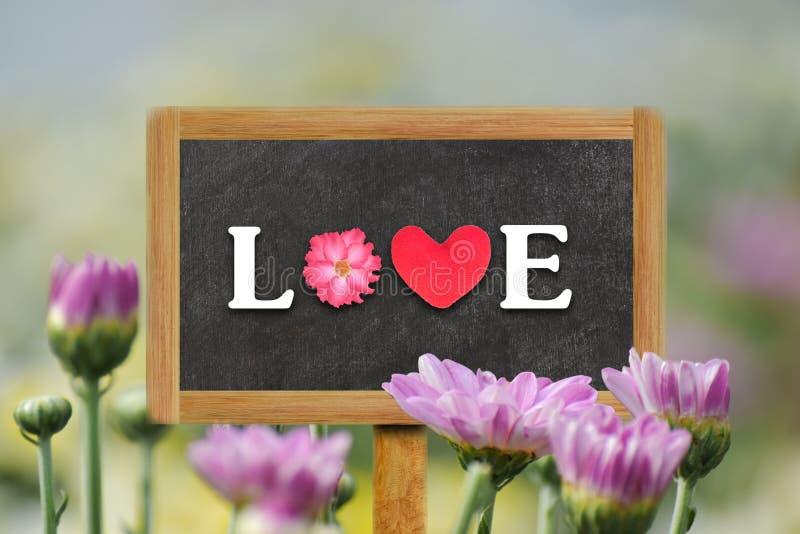 Word LOVE written on wood board chrysanthemum flower. Word LOVE written on wood board with soft blurred chrysanthemum flower in the background stock photos