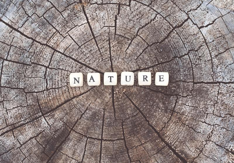 Word nature of alphabet beads on a tree stump surface in the forest. Word nature of wooden alphabet beads on a tree stump surface in the forest royalty free stock photo