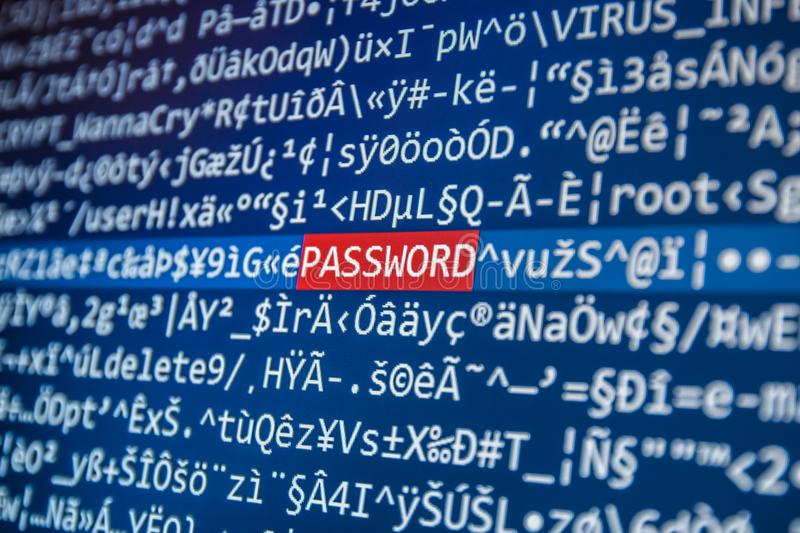 Word PASSWORD on the screen among the code stock photos