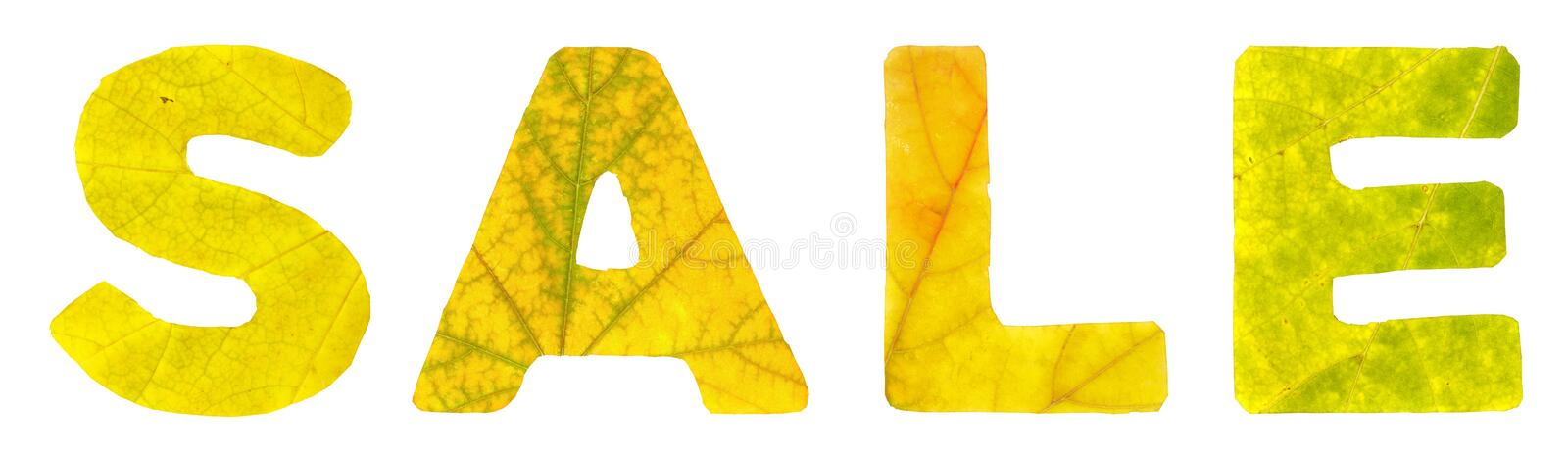 The word sale which is composed of the letters carved of autumn leaves royalty free stock images