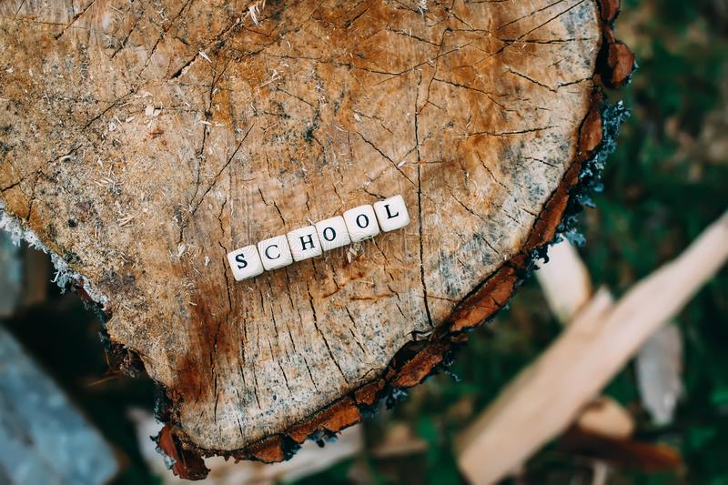 Word school of alphabet beads on a tree stump surface in the forest. Word school of wooden alphabet beads on a tree stump surface in the forest royalty free stock images