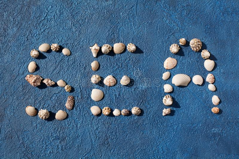 Word sea made of seashells on blue background top view close up, summer holidays concept, sea beach vacations design stock photo