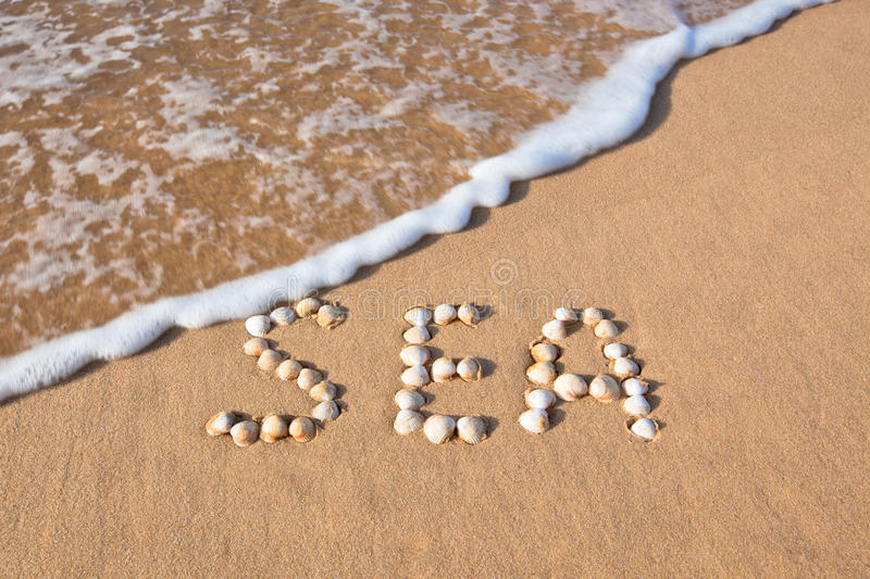 Download Word Sea Shell Written On Beach Sand Stock Image - Image: 17891625