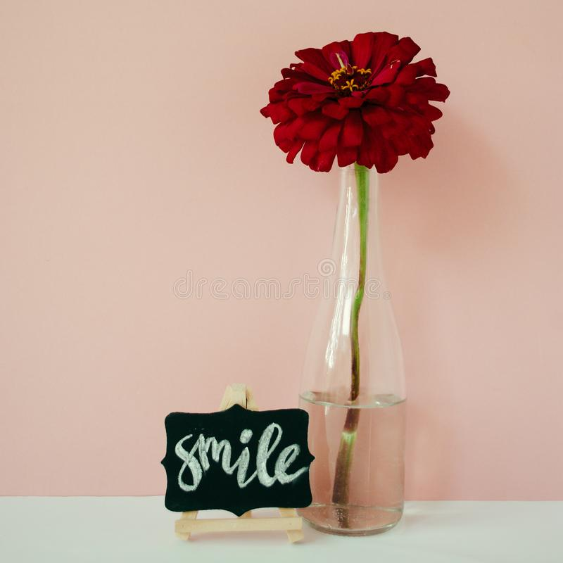 Word Smile written chalk on a mini chalkboard. Floral lifestyle composition in front of pale pink pastel background. Word Smile written chalk on a mini stock photos