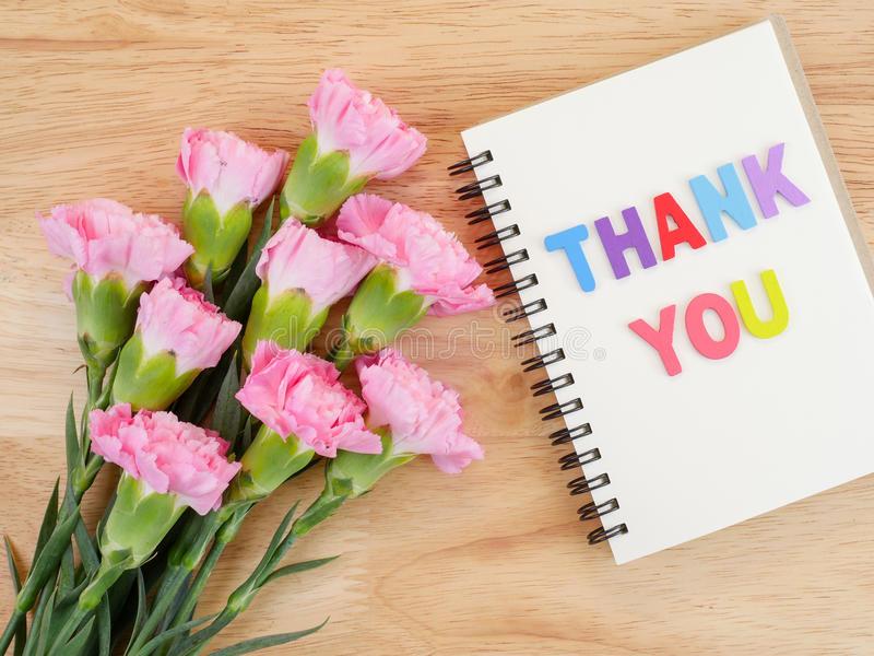 Word Spell Thank You And Carnation Flower 3 Stock Image - Image of ...