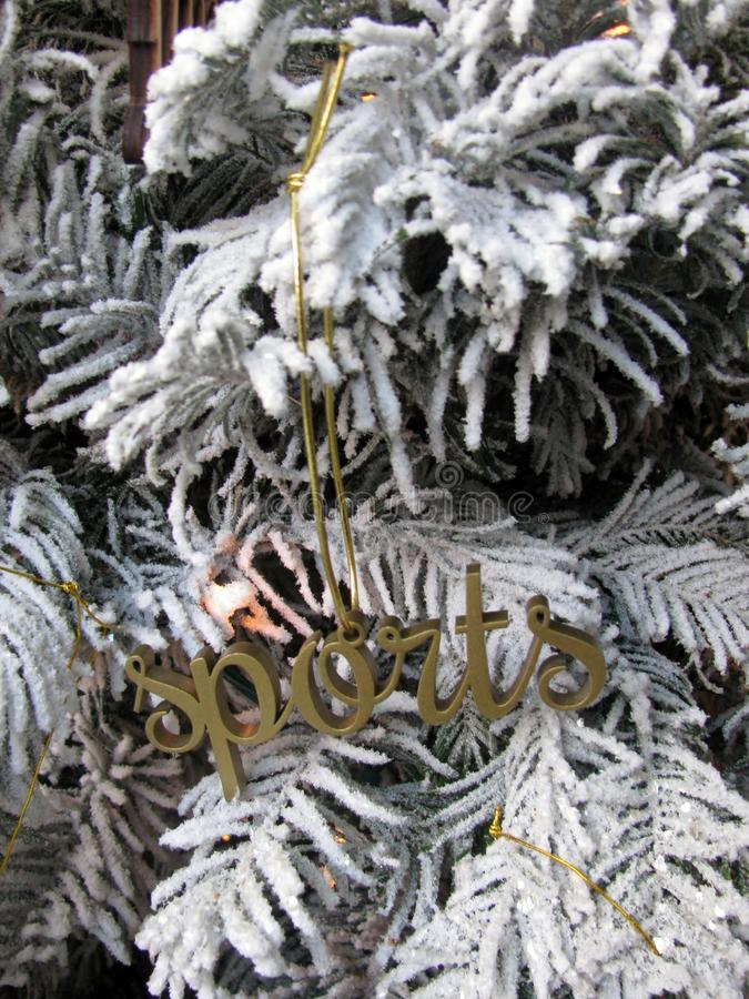 Word Sports wooden cutout Christmas decoration stock photo