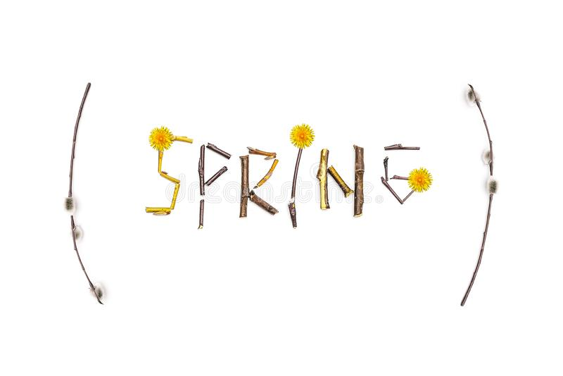 The word spring is laid out from the stalks of a flowering tree. The concept of approaching spring. Spring card with flowers. The word spring is laid out from royalty free stock photography