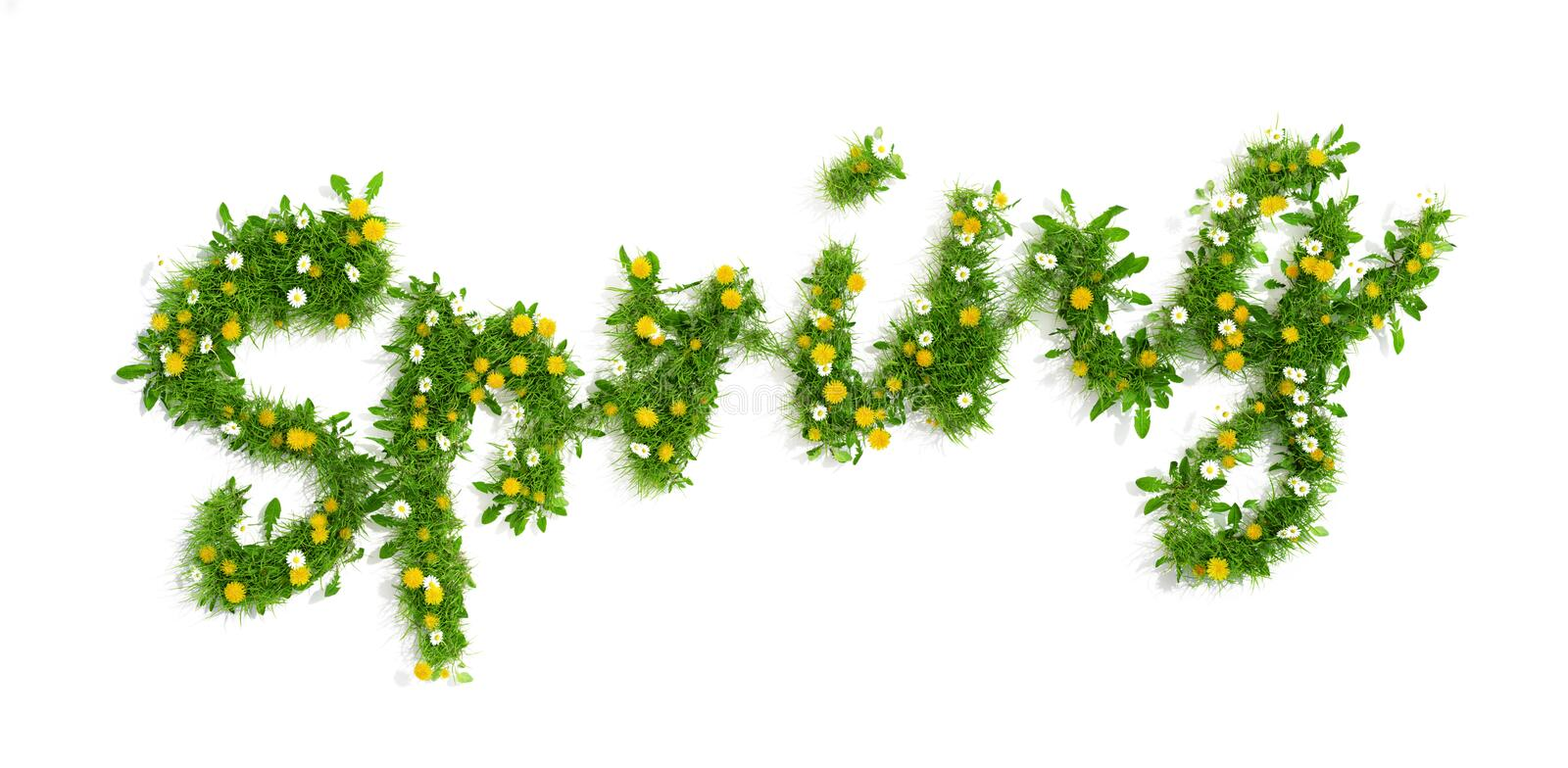 Spring inscription made of grass and flowers, 3D render. Word spring made of grass, dandelion and daisy flowers, 3D render royalty free illustration
