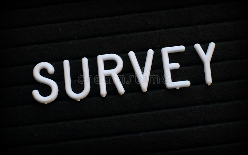 The word Survey on a Letter Board royalty free stock photography