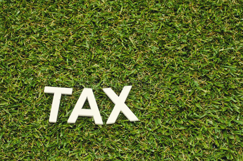 Word tax made from wood on artificial grass stock photos