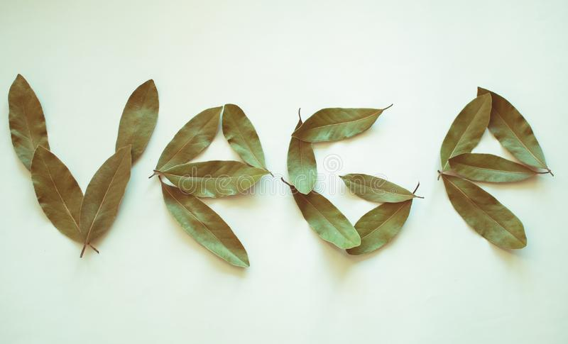 Word Vege. Bay leaves on white background. royalty free stock image