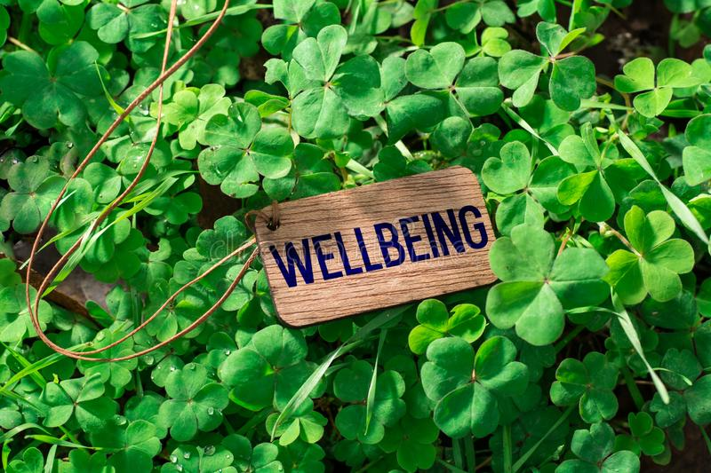 The word wellbeing wooden tag. On Clover royalty free stock image