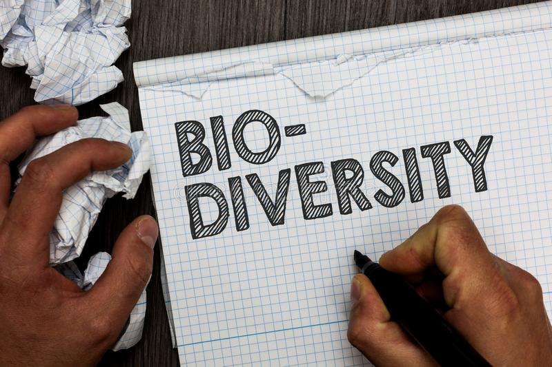 Word writing text Bio Diversity. Business concept for Variety of Life Organisms Marine Fauna Ecosystem Habitat Man. Holding marker notebook crumpled papers stock photography