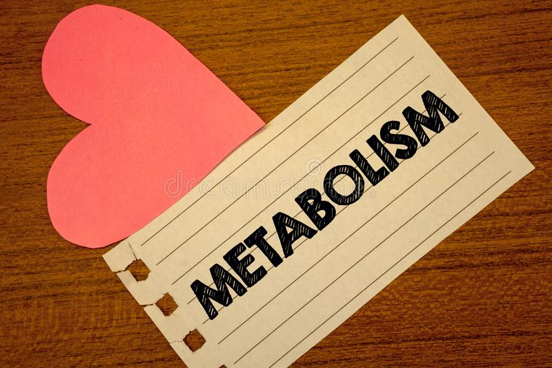 Word writing text Metabolism. Business concept for Chemical processes in body to produce energy food processing Paperpiece page he. Art table background typing stock photography